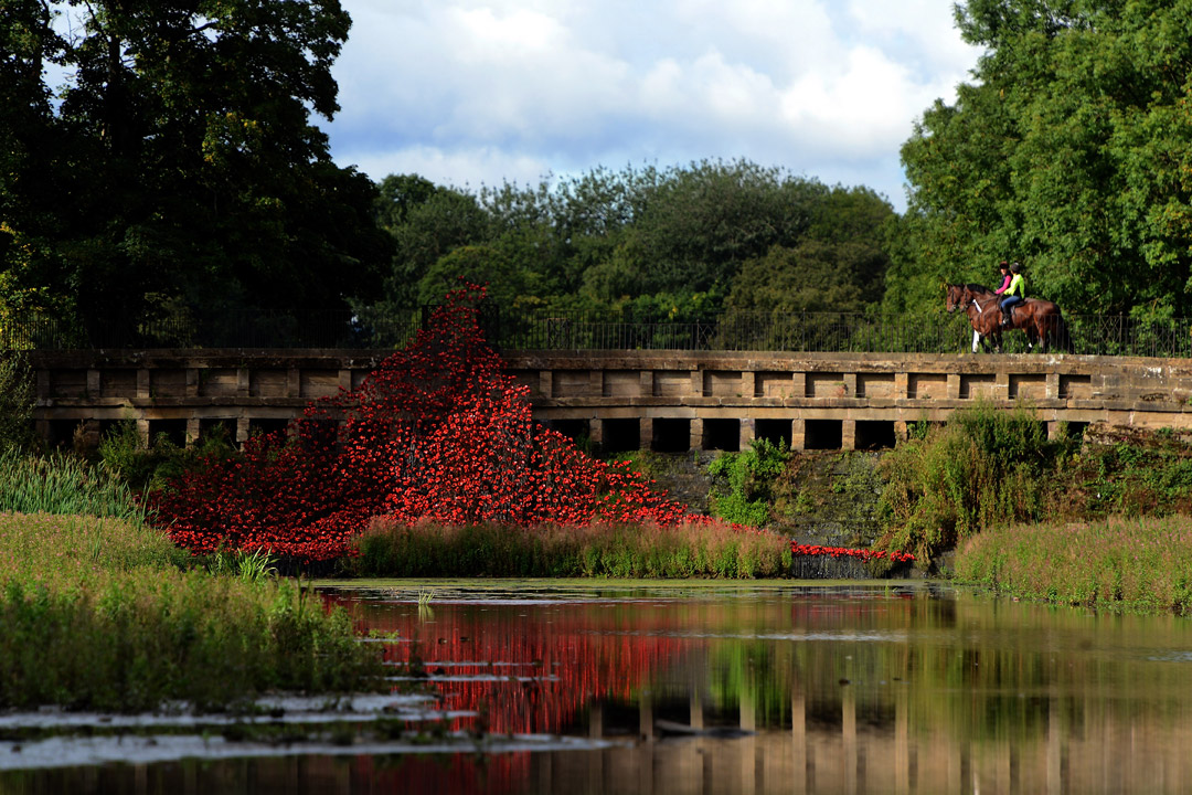 Wave at YSP c. Nigel Roddis Getty Images